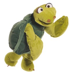 Aristotle the Turtle