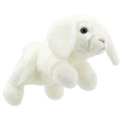 Rabbit (White) - Full Bodied Animal Puppet
