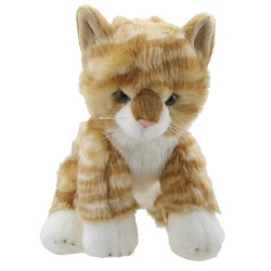 Cat (Ginger) - Wilberry Favourites Soft Toy