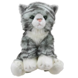 Cat (Tabby) - Wilberry Favourites Soft Toy