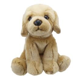 Labrador (Yellow) - Wilberry Favourites Soft Toy
