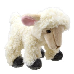 Lamb - Wilberry Favourites Soft Toy