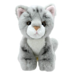 Cat (Grey) - Wilberry Mini Soft Toy