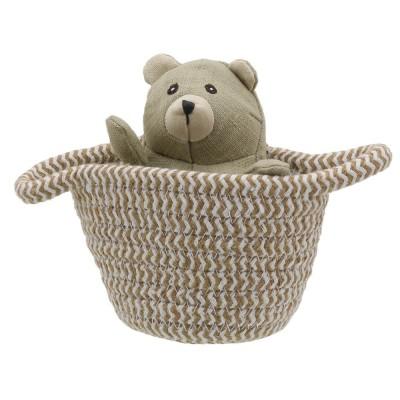 Pets in Baskets